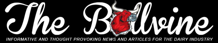 Bullvinewebheader-resized-image-760x150